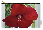 Hibiscus By Picket Fence Carry-all Pouch