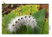 Hickory Tussock Carry-all Pouch