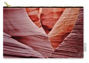 Hidden Canyon Angles. Carry-all Pouch