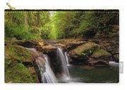 Hidden Falls At Rock Creek Carry-all Pouch