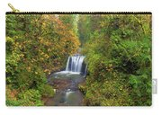 Hidden Falls In Autumn Carry-all Pouch