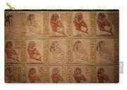 Hieroglyphic Detail Carry-all Pouch