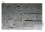 Hieroglyphics Carry-all Pouch