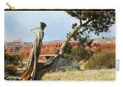 High Desert Carry-all Pouch