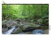 High Shoals Falls Trail In South Mountain Panorama Carry-all Pouch by Ranjay Mitra