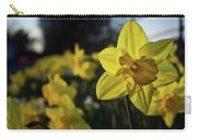 Highway Daffodil Carry-all Pouch