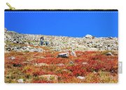 Hikers And Autumn Tundra On Mount Yale Colorado Carry-all Pouch