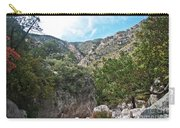 Hiking Guadalupe Carry-all Pouch