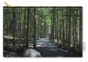 Hiking Trail At Brandywine Falls Provincial Park Carry-all Pouch