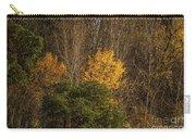 Hillside Autumn Carry-all Pouch