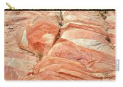 Hillside Of Color In Valley Of Fire Carry-all Pouch