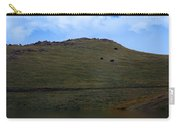 Hillside Reflection Carry-all Pouch