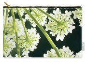 Himalayan Hogweed Cowparsnip Carry-all Pouch by American School