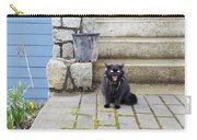 Hissing Cat Carry-all Pouch