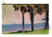 Historic Fort Sumter Charleston Sc Carry-all Pouch