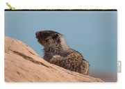 Hoary Marmot On Blue Carry-all Pouch