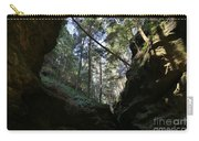 Hocking Hills Carry-all Pouch