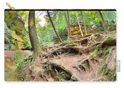 Hocking Hills Ohio Old Man's Gorge Trail Carry-all Pouch
