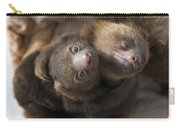 Hoffmanns Two-toed Sloth Orphans Hugging Carry-all Pouch by Suzi Eszterhas