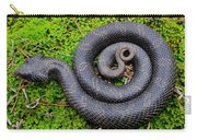 Hognose Spiral Carry-all Pouch