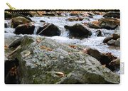 Hometown Series - Blue Ridge Parkway  Carry-all Pouch