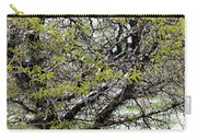 Honey Locust Tree On A Spring Snow Day Carry-all Pouch