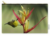 Honeyeater On Bird Of Paradise Carry-all Pouch