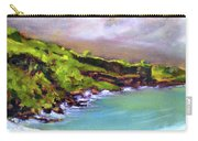 Ho'okena Pali - Morning Carry-all Pouch