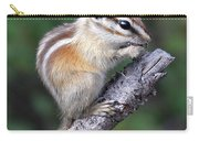 Hopi Chipmunk Carry-all Pouch