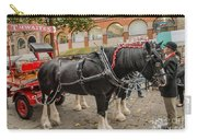 Horse Dray Carry-all Pouch