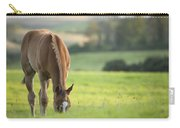 Horse In Field Near Ballyvaloo, Blackwater, Wexford Carry-all Pouch
