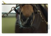 Horse Whiskers Carry-all Pouch