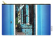 House Door 4 In Charleston Sc  Carry-all Pouch by Susanne Van Hulst