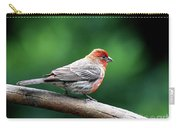 House Finch . 40d7227 Carry-all Pouch
