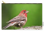 House Finch Perched Carry-all Pouch