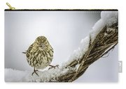 House Finch Snow Is Coming Carry-all Pouch by LeeAnn McLaneGoetz McLaneGoetzStudioLLCcom