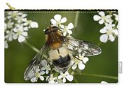 Hoverfly Leucozona Lucorum Carry-all Pouch