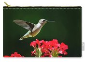 Hovering Hummingbird Carry-all Pouch by Christina Rollo