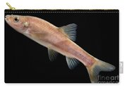 Huanjiang Golden Line Barbel Carry-all Pouch