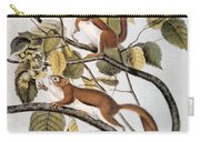 Hudsons Bay Squirrel Carry-all Pouch