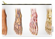 Human Foot Anatomy Showing Skin, Veins Carry-all Pouch
