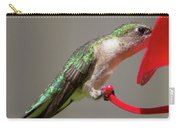 Humming Bird 10 Carry-all Pouch
