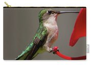 Humming Bird 8 Carry-all Pouch