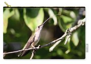 Hummingbird - Ruby-throated Hummingbird - Testing The Air Carry-all Pouch