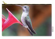 Hummingbird 1 Carry-all Pouch