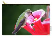 Hummingbird 33 Carry-all Pouch