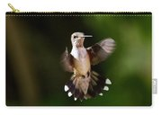 Hummingbird - Airborne Carry-all Pouch