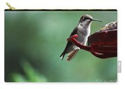 Hummingbird At Rest Carry-all Pouch