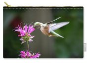 Hummingbird Beauty Carry-all Pouch