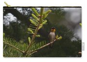 Hummingbird Flashing Carry-all Pouch